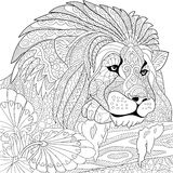 Zentangle stylized lion. Zentangle stylized cartoon lion (wild cat, leo zodiac). Hand drawn sketch for adult antistress coloring page, T-shirt emblem, logo or Stock Photos