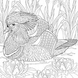 Zentangle stylized mandarin duck Royalty Free Stock Photos