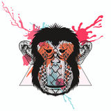 Zentangle stylized Monkey face in triangle frame with watercolor Stock Images