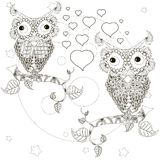 Zentangle stylized monochrome lovers owls sitting on the tree branches, moon, stars, hand drawn, hearts Stock Photo