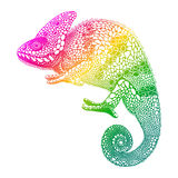 Zentangle stylized  multi coloured Chameleon. Hand Drawn Reptile Royalty Free Stock Images