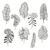 Zentangle stylized nine feathers for coloring page.  Royalty Free Stock Images