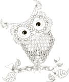 Zentangle stylized owl black and white hand drawn, vector Stock Photos
