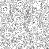 Zentangle Stylized Peacock Stock Photos