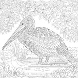 Zentangle stylized pelican bird Stock Photography