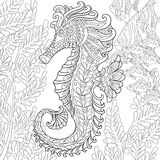 Zentangle stylized seahorse Stock Image