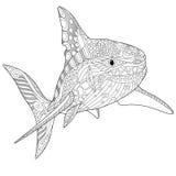 Zentangle stylized shark Stock Images