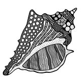 Zentangle stylized shell. Stock Images