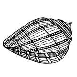 Zentangle stylized shell. Royalty Free Stock Photography