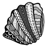 Zentangle stylized shell. Stock Image