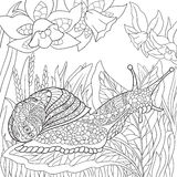 Zentangle stylized snail Stock Photography