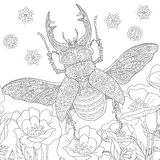 Zentangle stylized stag-beetle (Lucanus cervus) Stock Photo