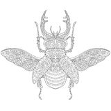 Zentangle stylized stag-beetle (Lucanus cervus) Stock Photos