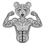 Zentangle stylized strong Bear. Hand Drawn sport vector illustra Royalty Free Stock Images