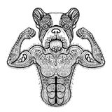 Zentangle stylized strong French Bulldog like bodybuilder. Hand. Drawn sport vector illustration isolated on white background. Vintage sketch for tattoo design Royalty Free Stock Photo