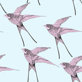 Zentangle stylized swallow seamless pattern. Hand Drawn Royalty Free Stock Images