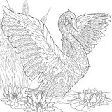 Zentangle stylized swan Stock Photos