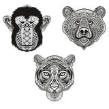 Zentangle stylized Tiger, Monkey, Bear faces. Hand Drawn doodle Royalty Free Stock Photography