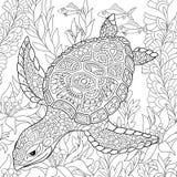 Zentangle Stylized Turtle Royalty Free Stock Images