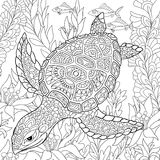 Zentangle stylized turtle Royalty Free Stock Images