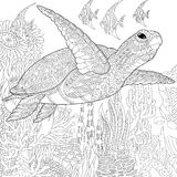Zentangle stylized turtle fish Royalty Free Stock Images