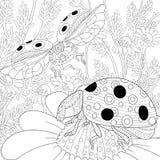 Zentangle stylized two ladybugs Stock Photos