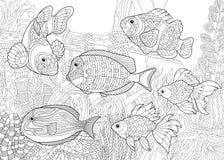 Zentangle stylized underwater world Stock Photo