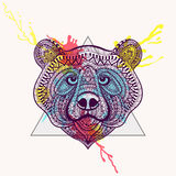Zentangle stylized violet Bear face in triangle frame with water Stock Photos