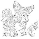 Zentangle stylized welsh corgi puppy. Coloring page of welsh corgi dog and butterfly on a flower. Freehand sketch drawing for adult antistress coloring book in vector illustration