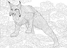 Zentangle stylized wildcat Royalty Free Stock Photos