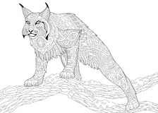 Zentangle stylized wildcat Royalty Free Stock Images