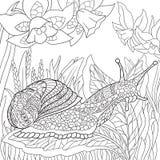 Zentangle stylizował ślimaczka ilustracja wektor