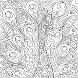 Zentangle stylizował pawia ilustracja wektor