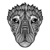 Zentangle tiger vector illustration Royalty Free Stock Photography