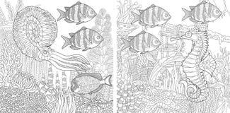 Free Zentangle Two Aquariums Stock Photos - 88111163