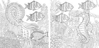 Zentangle two aquariums. Stylized composition of tropical fish, calamari squid, seahorse, underwater seaweed, corals and starfish. Set collection for adult anti Stock Photos