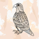 Zentangle vector Falcon, tattoo in hipster style. Ornamental tri Royalty Free Stock Photos