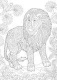 Zentangle wild lion royalty free illustration