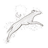 Zentangle wolf jumps on background night sky. 2018 New year vector illustration. Zen tangle dog. Black and white coloring book. Stock Photography