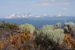 Zentrale Oregon-Kaskaden mit Rabbitbrush stockbild