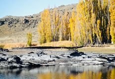 Zentrale Otago-Landschaft im Sommer mit Felsen stockbild