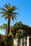 Zentrale von Gandia-Valencia-Spanien stockfotos