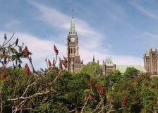Zentrales Teil 2008 des Ottawa-Parlaments Stockfotografie