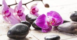 Zenweiblichkeit mit Orchideenblumen und Massagesteinen Stockbilder