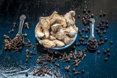 Zenzero asciutto con i chiodi di garofano, il sale ed i granelli di pepe neri Immagine Stock