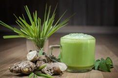 Zenzero del tè verde fotografia stock libera da diritti