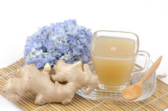 Zenzero, Ginger Water (zingiber officinale Roscoe.). Immagini Stock