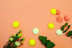Zephyr i kwiaty na różowym tle z kopii przestrzenią zdjęcie stock