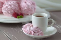 Zephyr or marshmallow with raspberry flavor Royalty Free Stock Photo