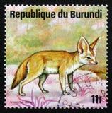 Zerda de renard de Fennec ou de Vulpes de fennec, animaux Burundi, cercle de série Images stock